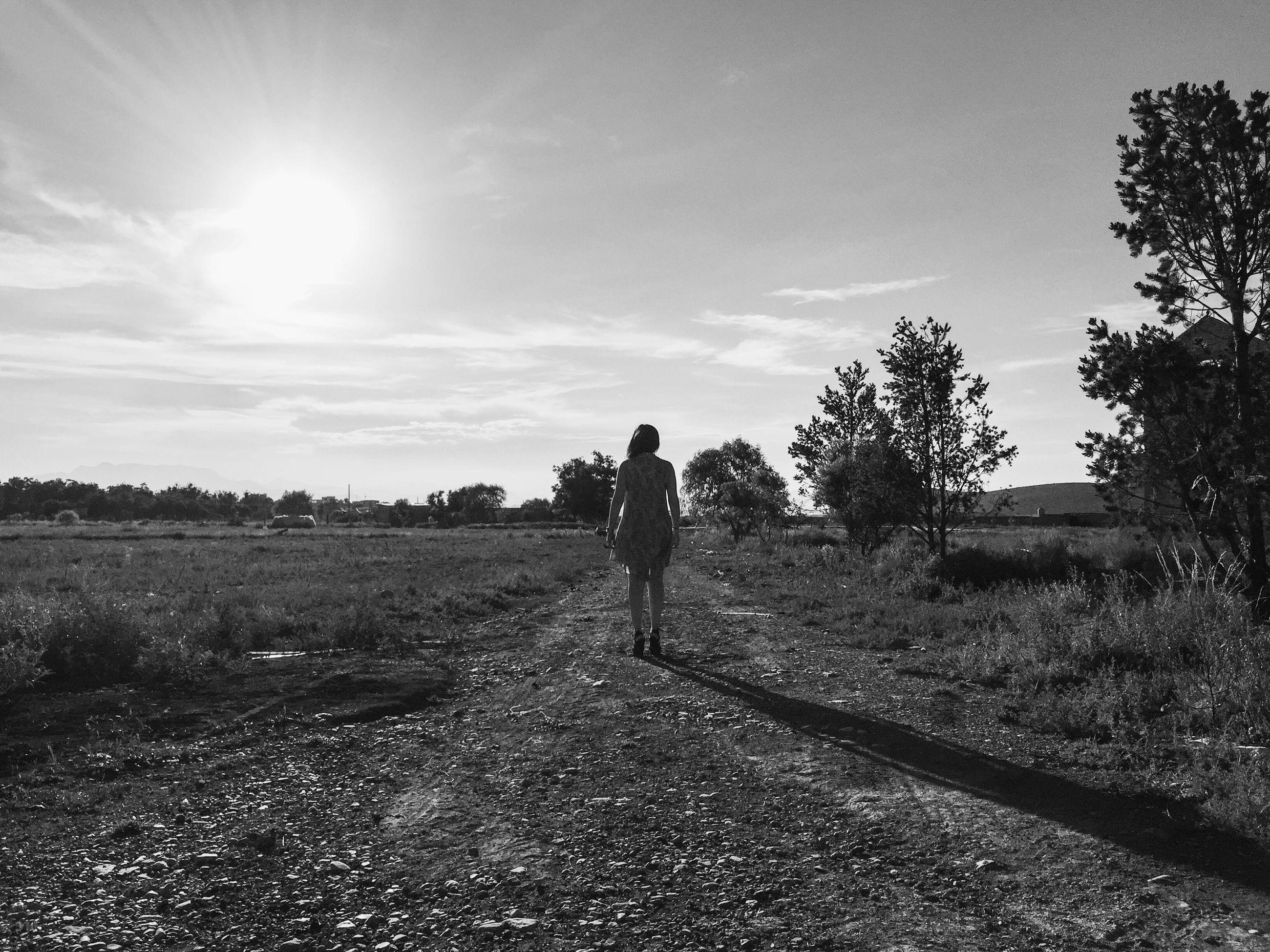 sunlight, lifestyles, tree, field, walking, sky, full length, leisure activity, grass, rear view, landscape, sun, the way forward, men, tranquility, nature, shadow, sunbeam