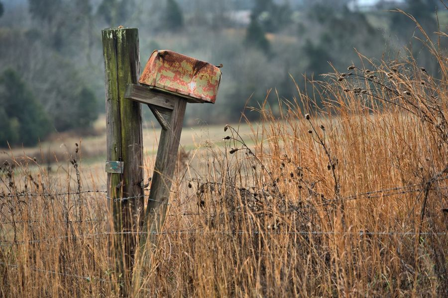 Out shooting today, a rainy overcast day, just the way I like it! Mailboxes Abandoned Cence Post Damaged Day Fence Fence Post With Barbed Wire Fences Field Grass Growth Mail Box In A Field Mailbox Nature No People Obsolete Outdoors Rusty