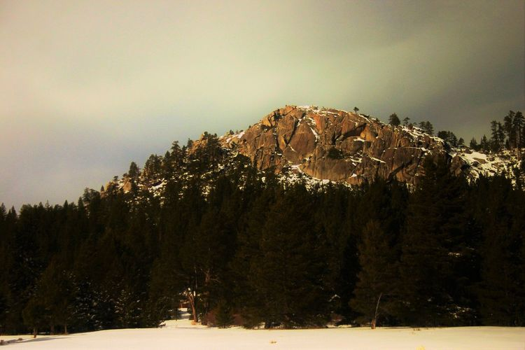Sunlight barely peeking through the clouds to capture it reflecting off the rocks surface. Snow Tree Cold Temperature Winter Nature Beauty In Nature Tranquility Tranquil Scene Mountain Scenics Landscape Forest Sky Outdoors No People Day