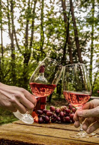 Close-up of hands toasting glasses against trees