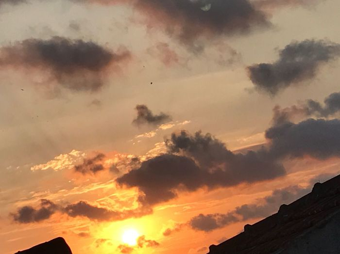 Sunset Cloud - Sky On My Roof Birds In Flight ☀️ Sun Nature Low Angle View I Like Sunsets 🌅 🌅 Beauty In Nature Istanbul Turkey First Eyeem Photo