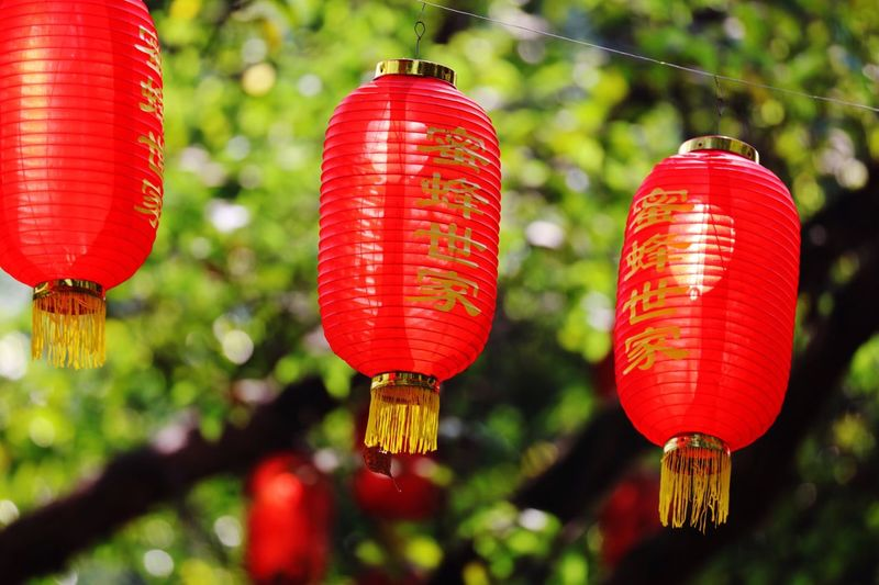 Low angle view of chinese lanterns hanging outdoors