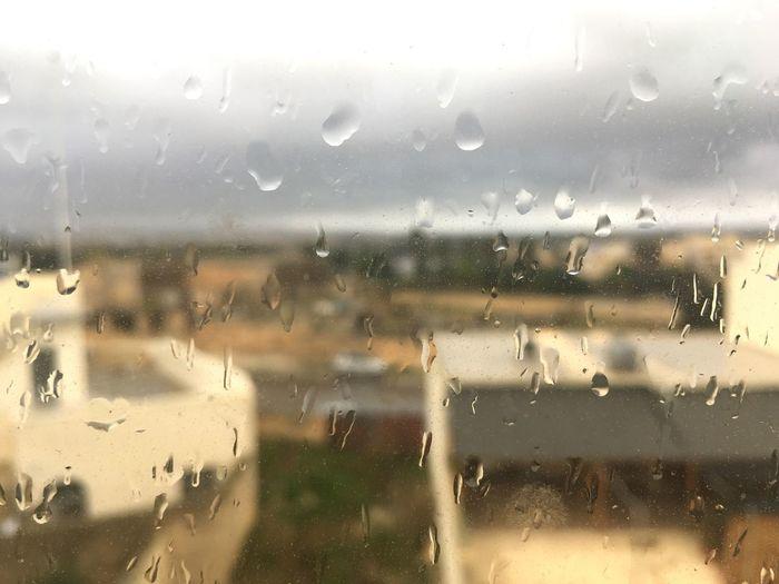 Rainy Rain Raindrops Rainy Days