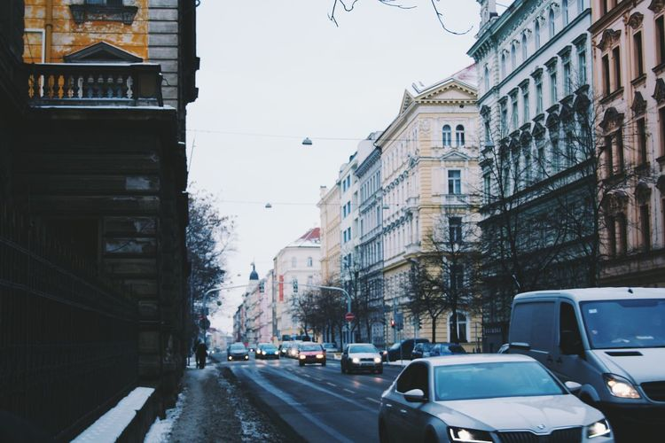 Cars on road along buildings in winter