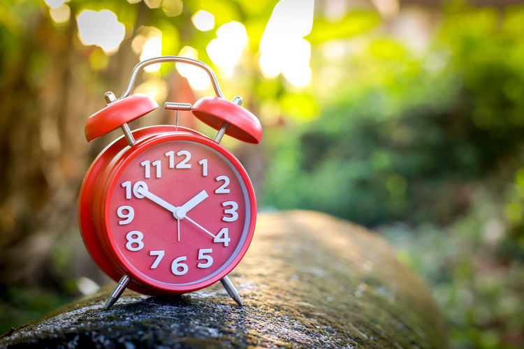 Red Alarm Clock Alarm Clock Time Clock Focus On Foreground Minute Hand Number Clock Face Day Red Close-up Outdoors Tree Plant No People Clock Hand Accuracy Instrument Of Time Communication Hour Hand Shape Red Alarm Clock Clockworks