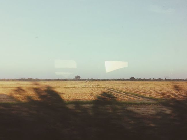 Fromthetrain Nature Sunnyday Thailand Trainview Agriculture Field Outdoors No People Rural Scene Day Landscape