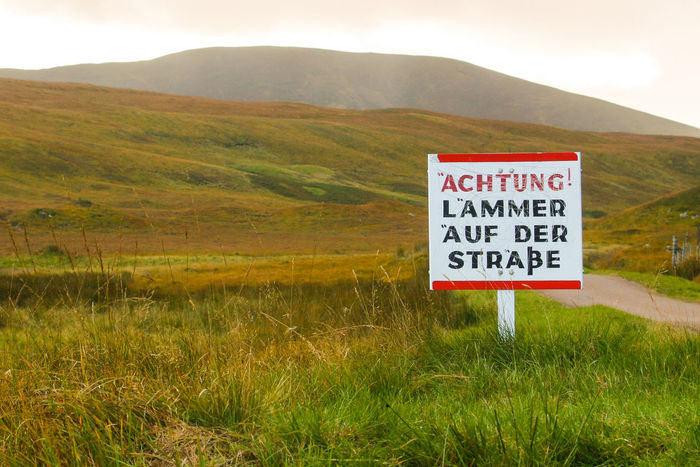 German Language North Coast 500 Scotland Sutherland Beauty In Nature Day Grass Landscape Mountain Mountain Range Nature No People Outdoors Scenery Scenics Scottish Highlands Sheep Sign Sky Text Tranquility Warning Sign Western Script