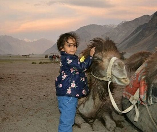 All it needs to feel love is a soft caress and a kind heart Bactrian Camel Loving Girl Childhood Mountain Girls Rural Scene Sky Livestock Close-up
