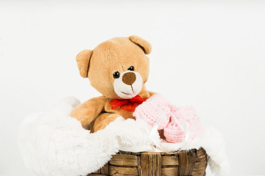 Bandage Bear Childhood Childhood Memories Close-up Cut Out Cute Day For Children No People Studio Shot Stuffed Toy Teddy Bear Tenderness Toy White Background
