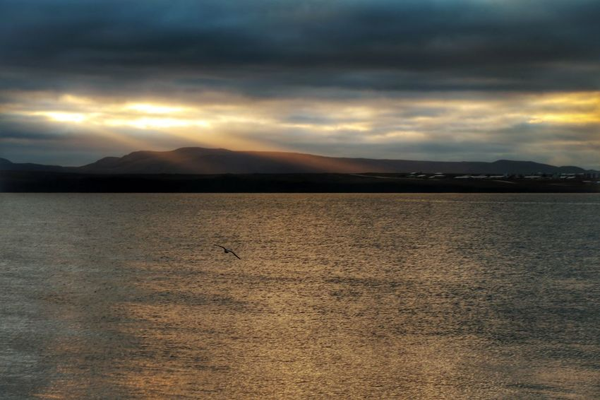 Dramatic Sky Cloud - Sky Nature Tranquility Storm Cloud Mountain Njarðvik Keflavík Morning Walk Morning Light Sea