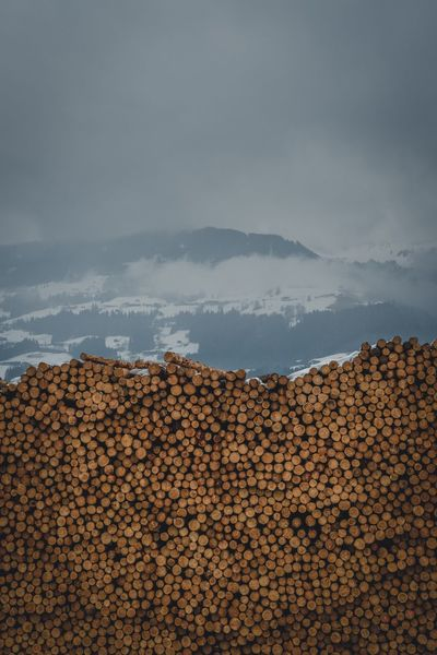 Wood Wood North West British Columbia Canada Pile Wood Structure Wooden Background Woodpile Wood Paneling WoodLand Wood - Material Wood EyeEm Selects Mountain Nature Sky Outdoors Cloud - Sky No People Mountain Range Beauty In Nature Scenics Day Salt - Mineral