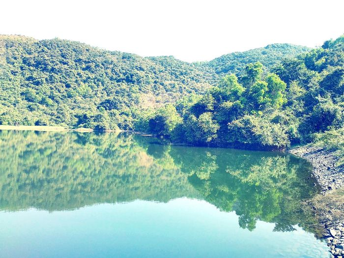 Showcase April Nature Naturelover. Beautiful Nature. A Lake In Goa,india Green. Eyeem Collection. Eyeem Best Clicks. Aquatic Life