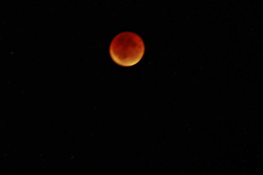 Blood moon Check This Out Taking Photos Photography Bloodmoon