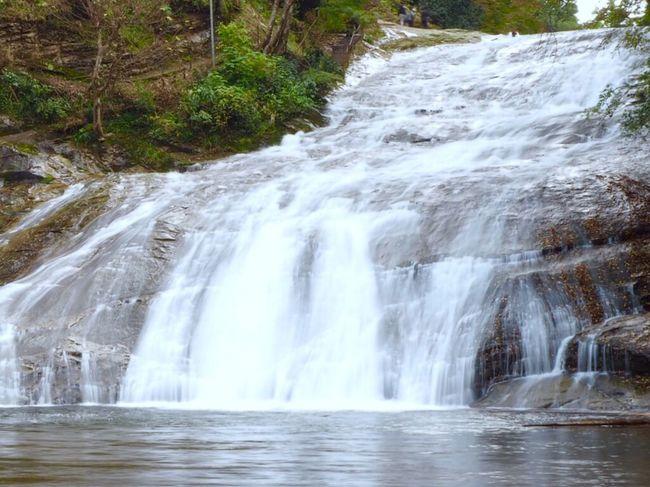 養老渓谷 粟又の滝 養老の滝 滝 Japan Waterfall Water Scenics Nature Travel Destinations Rock - Object Idyllic Beauty In Nature No People Motion Outdoors Vacations Long Exposure Rapid Stream - Flowing Water Tree Day Power In Nature Freshness
