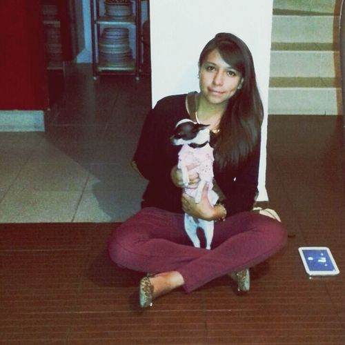 Cute Dog Chihuahua My Favorite Chihuahua <3 Dog #chihuahua Mia