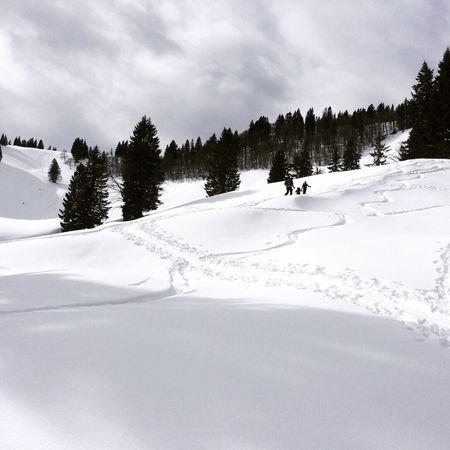 Skitouring Bergwelten Bergmomente2016 Spuren Im Schnee Powderdays PerfectDays