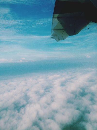 The bright sky