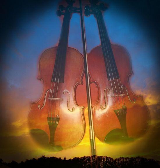 Violine  Violin My Love Violin Violin Strings Musical Instrument Arts Culture And Entertainment Violine  Violine