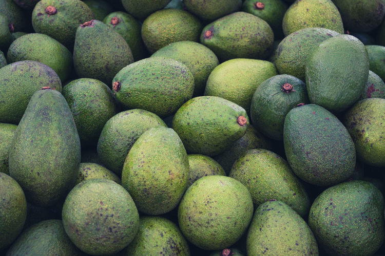 avocado Abundance Agriculture Avocado Backgrounds Cantaloupe Close-up Day Food Food And Drink For Sale Freshness Fruit Full Frame Green Color Healthy Eating Large Group Of Objects Market Stall No People Nutrition Outdoors Salad Vegetable Vegetables