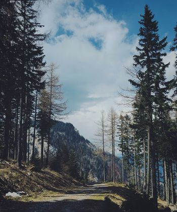 Taking Photos Followme Mountain VSCO Austria Schneeberg Adventure