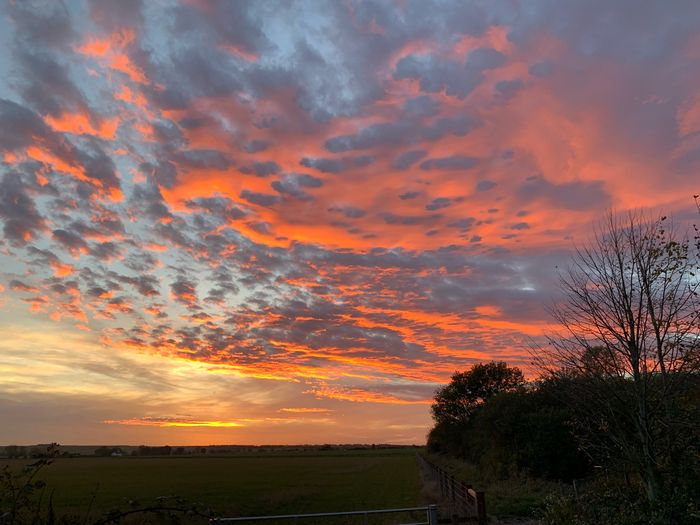 #MobileSky #sunset #clouds #sun #sky #shotoniphone Thing I miss about living where I did in Didcot was the epic sunsets. Don't seem to get them as good up here in the hills. MobileSky Sunset Sky Cloud - Sky Beauty In Nature Scenics - Nature Tranquil Scene Tranquility