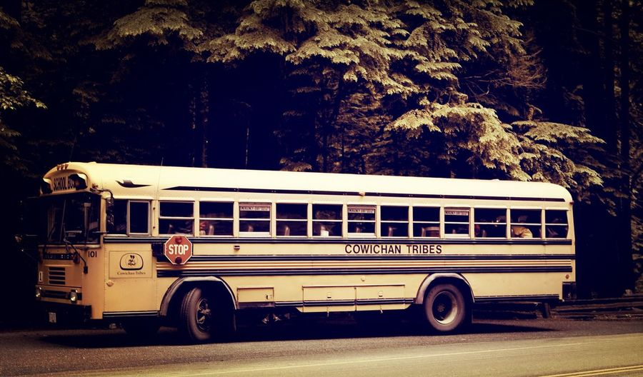 Bus School Bus Canada Road Trip