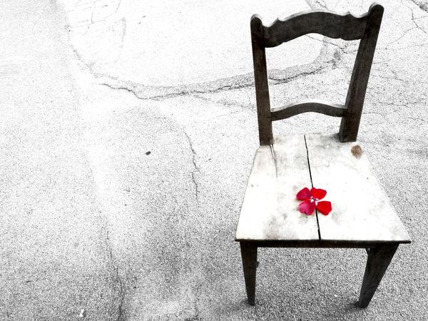 Old Chair Heart Shape My Point Of View Artistic Expression Simple Photography Red Rose Interesting EyeEm Gallery Nature EyeEmbestshots EyeEmNewHere Eye4photography  Beautiful Backgrounds Wood - Material Wood Chair Eyeemphotography Exceptional Photographs Rose Petals Roses EyeEm EyeEm Best Shots My Year My View Red Background Live For The Story Out Of The Box The Street Photographer - 2017 EyeEm Awards The Great Outdoors - 2017 EyeEm Awards The Photojournalist - 2017 EyeEm Awards The Architect - 2017 EyeEm Awards Place Of Heart EyeEm Selects