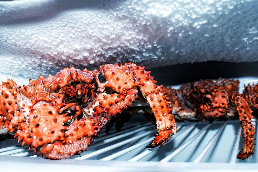 Crabs 🦀🦀🦀 Crab - Seafood Food Photography Food Foodphotography Food Freezer SEAFOOD🐡 Crabs Crab No People Close-up Sea Life Animal Themes Nature
