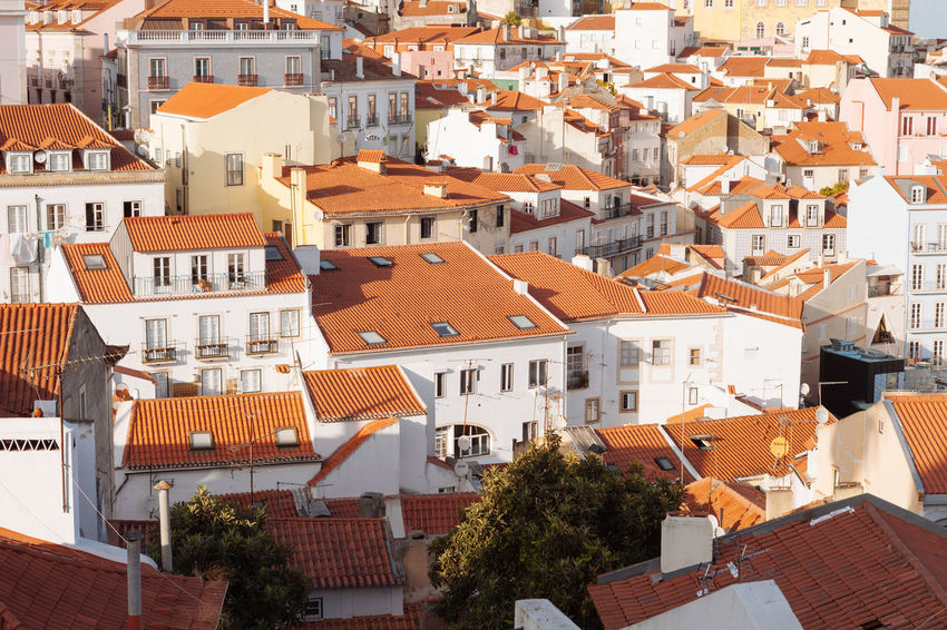 Building Exterior Architecture Built Structure Building Roof City Residential District Crowd Crowded House Town High Angle View Full Frame Day Community Outdoors Roof Tile Nature TOWNSCAPE Apartment Settlement
