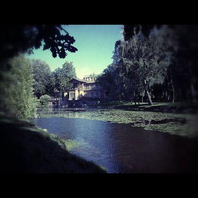 сад Спб Россия вид питер панорама красиво пруд берег фото iphone instagraphy photo bank building spb street russia pond lake nice photo