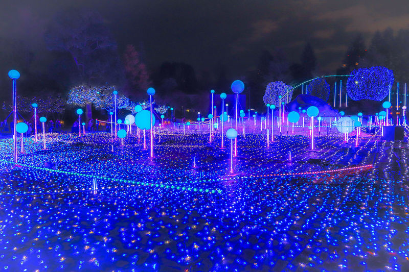 東京ミッドタウンイルミネーション 東京ミッドタウン Tokyomidtown Nightview Tokyo Japan Illuminated Technology Blue Multi Colored Celebration Christmas Lights Fairy Lights Electric Light