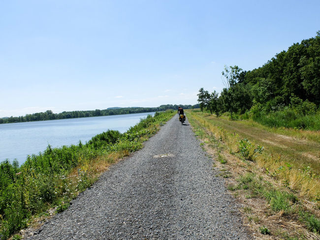 Adventure By Bike Bike Trip Travel Photography Adult Adults Only Beauty In Nature Bike Packing Bike Touring Casual Clothing Clear Sky Day Diminishing Perspective Full Length Grass Lifestyles Nature One Person One Woman Only Outdoors People Real People Rear View Road Scenics Sky The Way Forward Transportation Tree Walking Wilderness Adventure Women