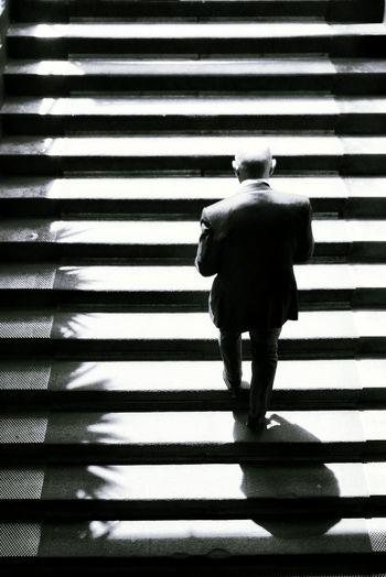 Rear view of man walking on zebra crossing