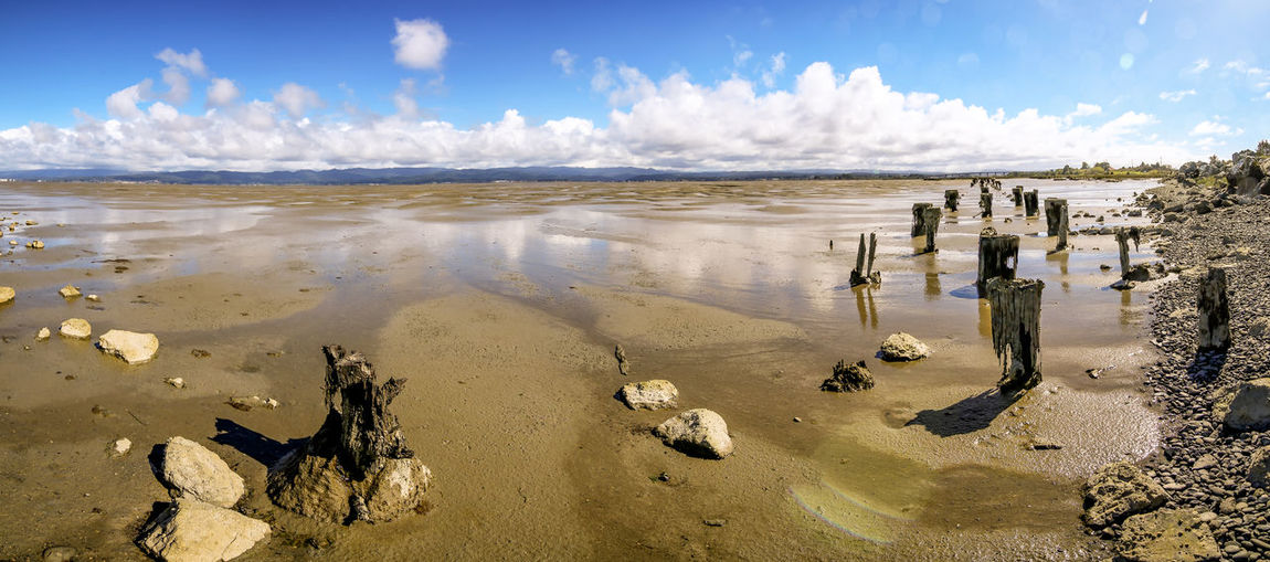 Low tide at the bay, Humboldt County, California. Humboldt County Panorama Bay Beach Beauty In Nature Cloud - Sky Day Daylight Horizon Over Water Landscape Low Tide Nature No People Outdoors Panoramic Photography Piling Sand Scenics Sea Sky Sunlight Tranquil Scene Tranquility Travel Destinations Water