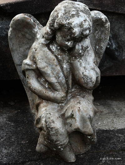 Angels Cemetery Deterioration Fallen Angel Helo World Old Cemetery Taking Photos Taking Pictures