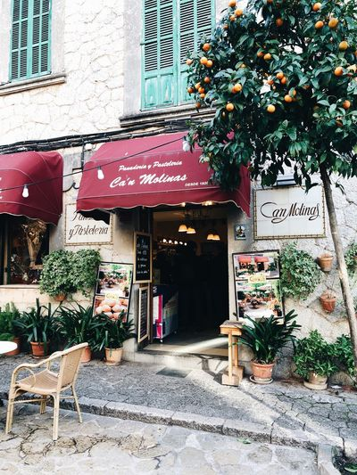 spain Travel Culture Mallorca Architecture Built Structure Building Exterior Plant Text Communication Nature Day Building Entrance Sign Outdoors No People Western Script Potted Plant City Tree Door Growth Chair