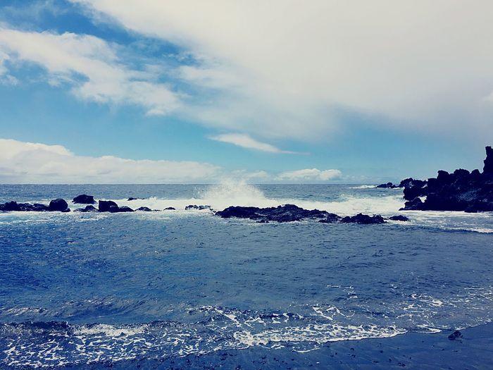 Blue Wave @Blue