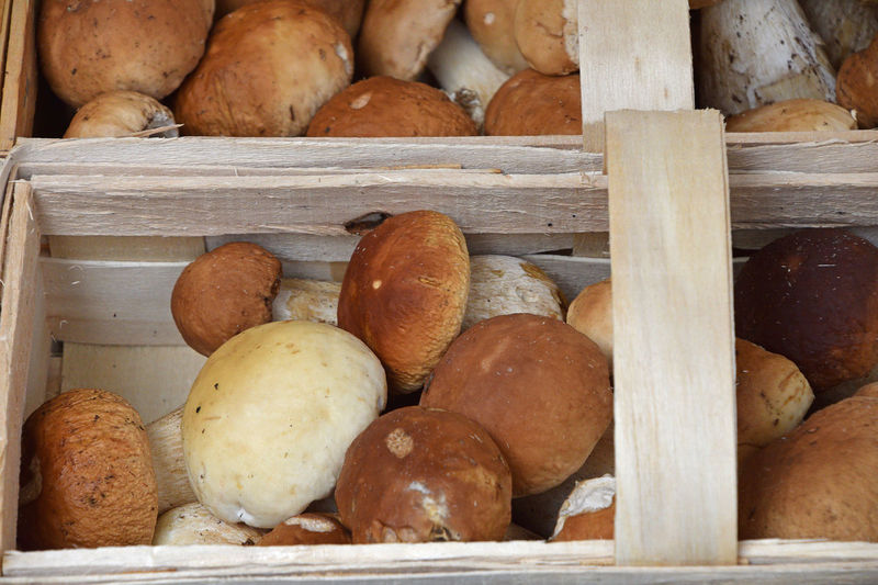 Fresh autumn season porcini mushrooms (ceps, Boletus edulis) in wooden box on retail farmers market, close up Autumn Cuisine Food And Drink Harvest Season Market Mushrooms Porcini Mushrooms Basket Close-up Food Freshness Gourmet Harvest Harvest Time Healthy Eating Market Stall Marketplace Mushroom Porcino White Wooden