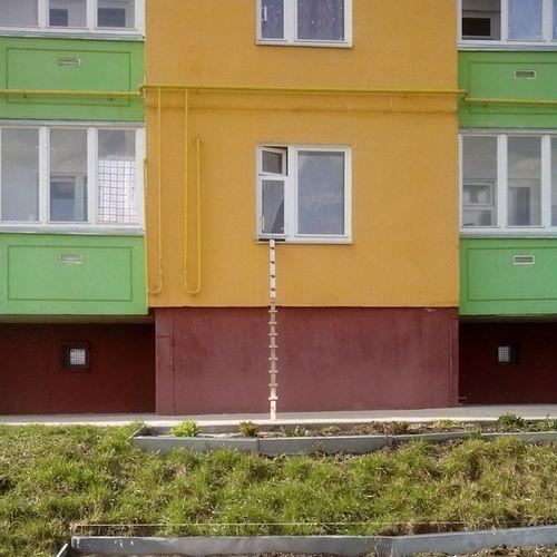 Лестница для котэ лайфхак котэ лестница орёл ботаника