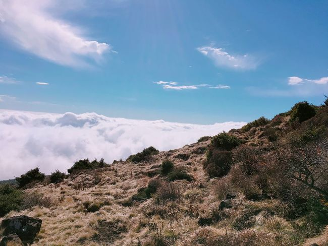 Perspectives On Nature Sky Nature Beauty In Nature Cloud - Sky Tranquility Tranquil Scene Day Mountain Outdoors Scenics No People Landscape Scenery 한라산  백록담 JEJU ISLAND