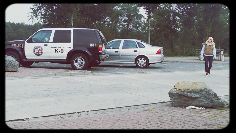 Police Policecar Polizei