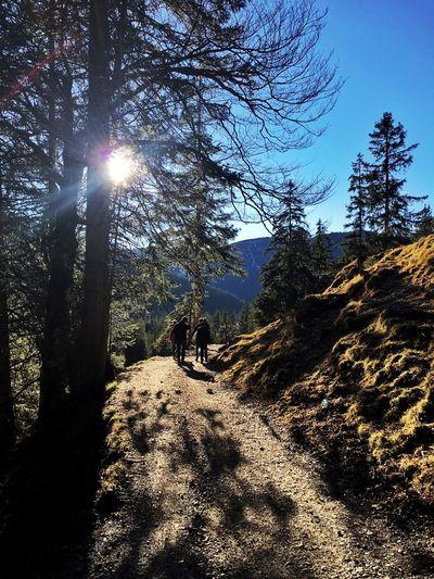 Hiking On A Hike Quality Time Enjoying The Sun Blue Sky Kids Gapa1516