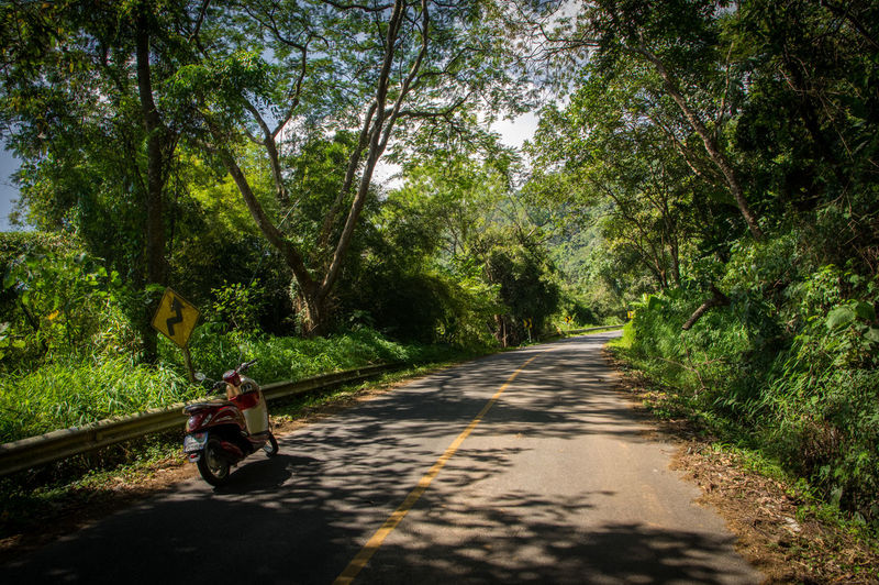 Driving with motorcycle in Golden Triangle Tree Plant Transportation Sitting Road Direction Adult Nature The Way Forward Full Length Day Casual Clothing Men Travel Mode Of Transportation Outdoors Forest