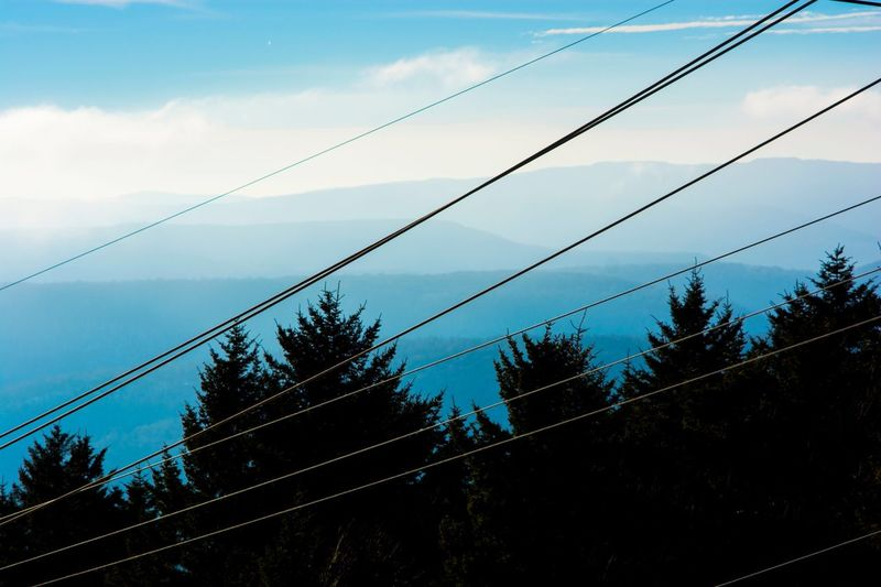 Embrace The power lines that be. Snowboarding Skiing Travel Outdoors Landscape_Collection Landscape West Virginia Mountains Cable Tree Silhouette Sky Nature Blue Shades Of Winter 17.62°