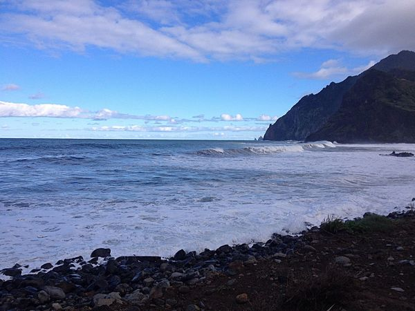 Ocean Nature