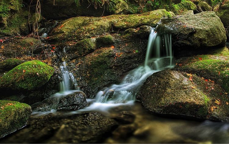 -Smooth Times- Waterfall Water Rock - Object Moss No People Motion Long Exposure Nature Scenics Beauty In Nature Rapid Outdoors Day Freshness Canon5Dmk3 Canonphotography Nature Sigma 35mm Art Seto Falls