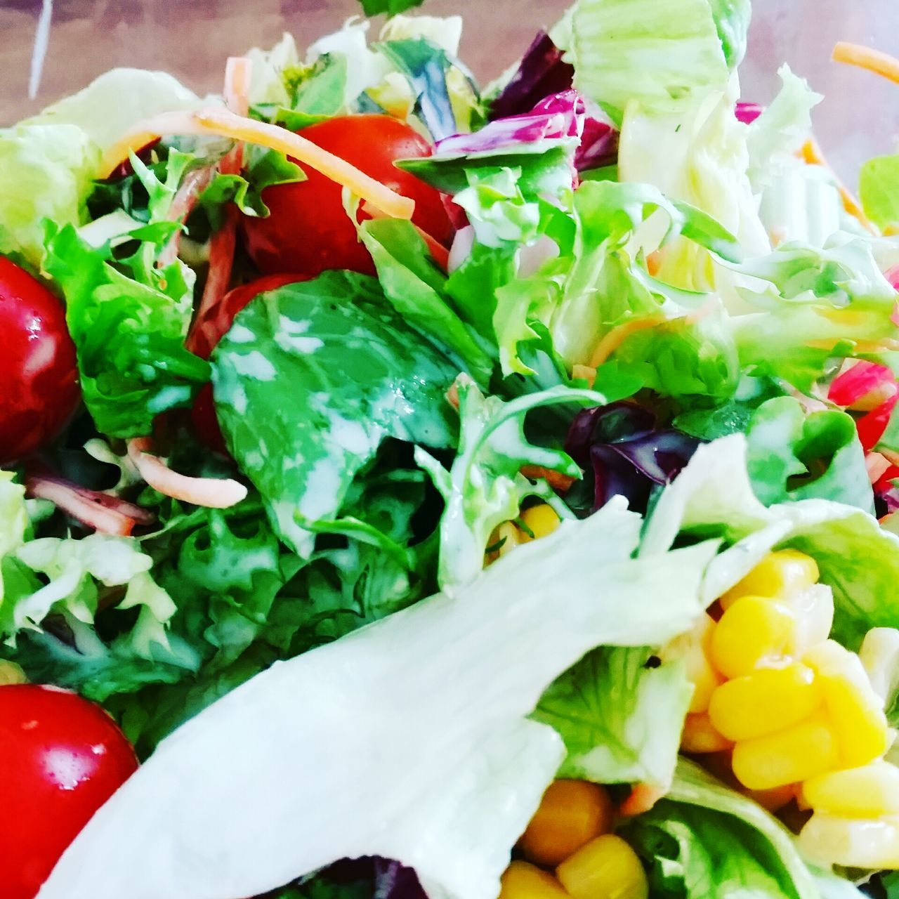 food, food and drink, vegetable, salad, healthy eating, freshness, no people, tomato, close-up, ready-to-eat, indoors, lettuce, day