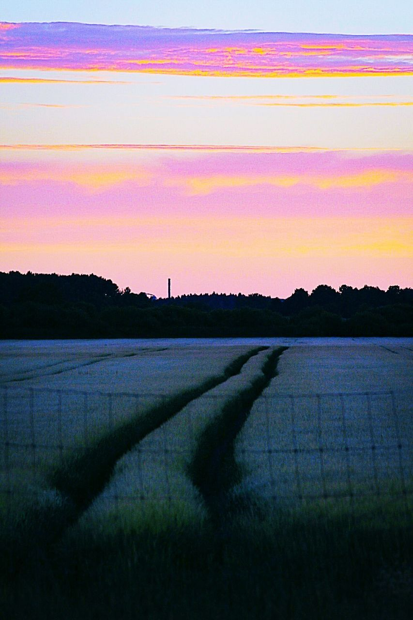 agriculture, tranquil scene, nature, scenics, rural scene, sunset, field, beauty in nature, landscape, tranquility, no people, sky, growth, outdoors, water, grass, day