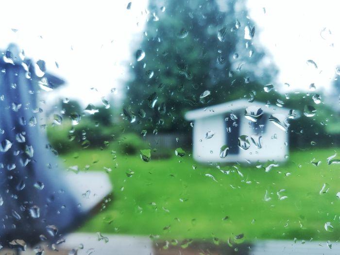 rainy day in