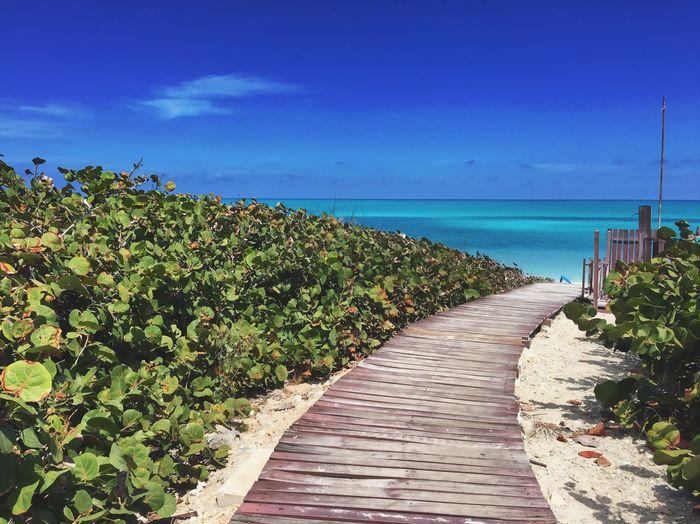 Walkway by sea against blue sky